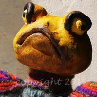 handpuppe-frosch
