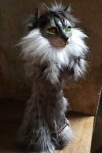 Katze-Main-Coon-Katter-Handpuppe-Portrait-Valerie-Bayol tierportrait-hund-katze-handpuppe-marionette-bueste